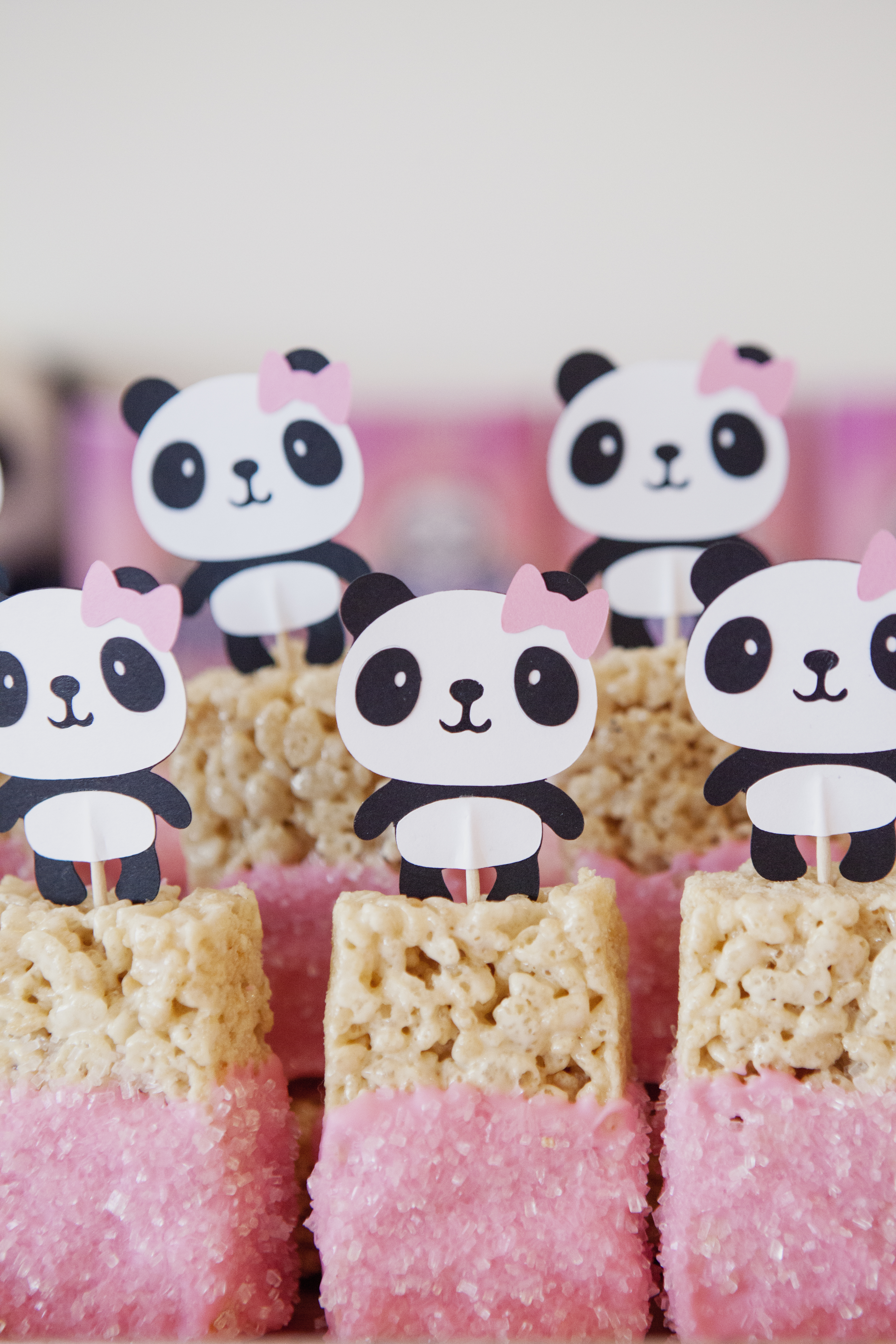 Amanda Panda\'s 1st Birthday Party! – Lace And Lollipops